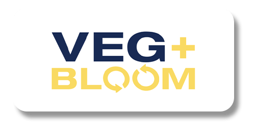 VEG+BLOOM