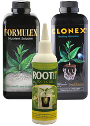 Rooting Compounds