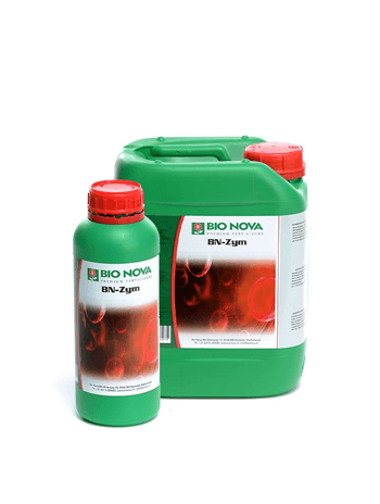 Root Cleaning Enzymes
