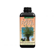 Growth Technology Olive Focus 1L