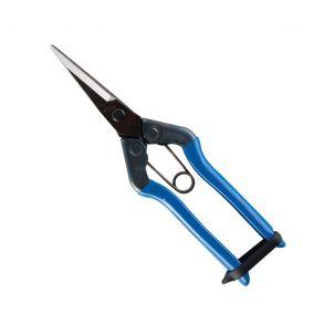 Blue Chikamasa Pro Scissors