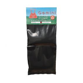 Gemini CO2 Bag