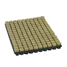 Rockwool Starter Trays & Cubes