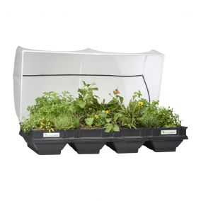 Vegepod Garden Bed with Cover - Large
