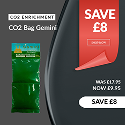 Co2 Bag Gemini