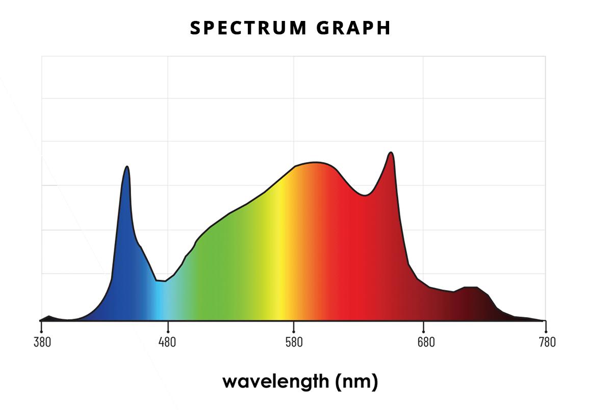attis-spectrum