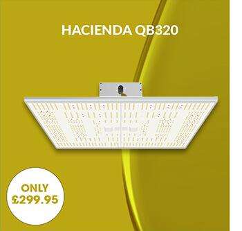 Hacienda QB-320 LED