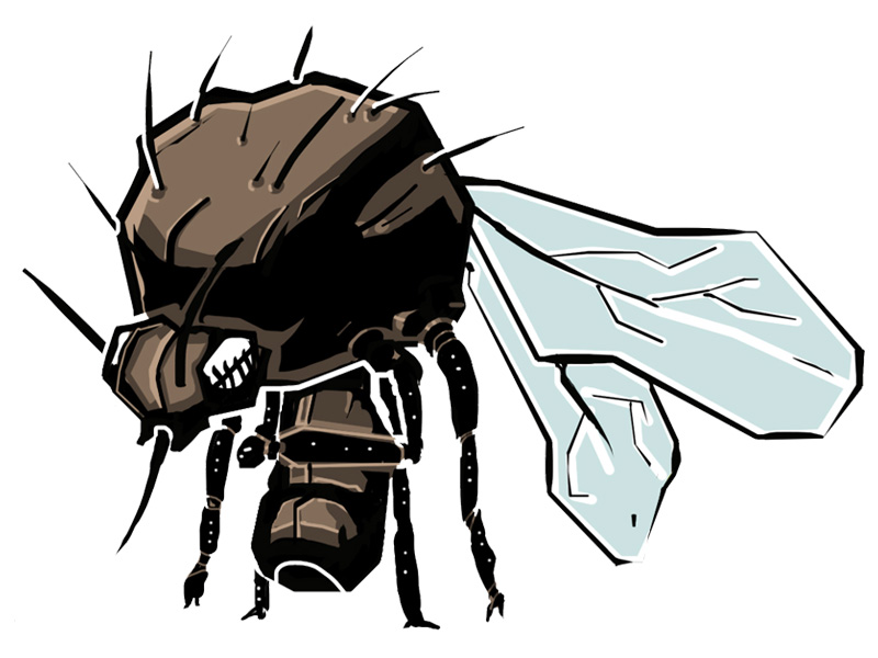 Fungus Gnat aka Sciarid Fly