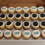 Canna & Holland Hydroponics cakes