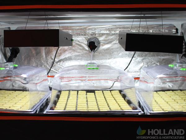Indoor Growing - T5 Lights & Propagtors