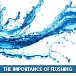 The Importance Of Flushing