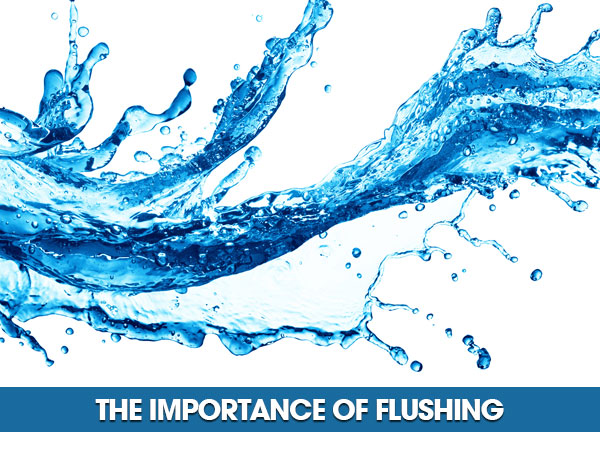 The Importance Of Flushing | What's On The Grow    | Holland