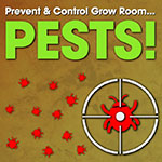 Part II - Prevent & Control Grow Room Pests This Summer