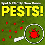 Part I - Spot & Identify Grow Room Pests This Summer