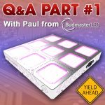 Q&A With Paul From Budmaster - Part #1