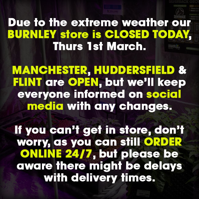 Weather Update: Burnley Store Closed, All Others Open!