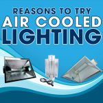 Reasons To Try Air Cooled Lighting This Summer