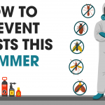 How to prevent Pests this summer!