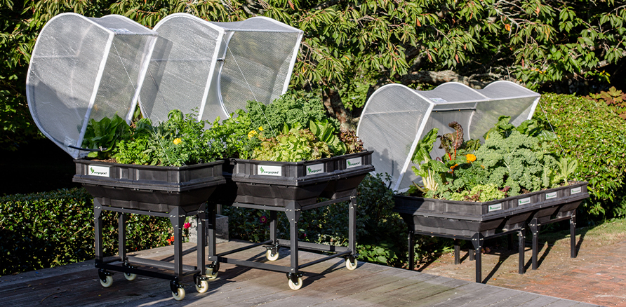vegepod garden bed - large, medium and small with trolley stands